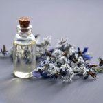 Jakie właściwości posiada olejek z ostropestu plamistego?