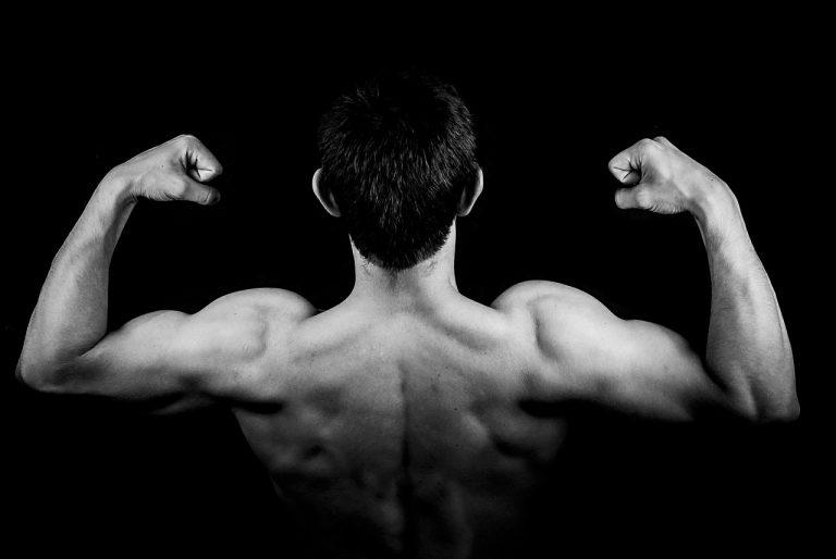 Jakie czynniki wpływają na budowę naszych mięśni?